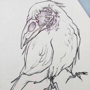 Professionel tegner Jakob i tegner zombie fugl