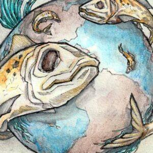 Illustrationer af professionel tegner og illustrator Jakob i